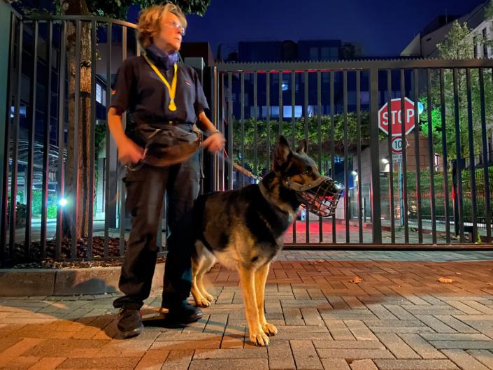 Diensthundeteam nachts in der Stadt