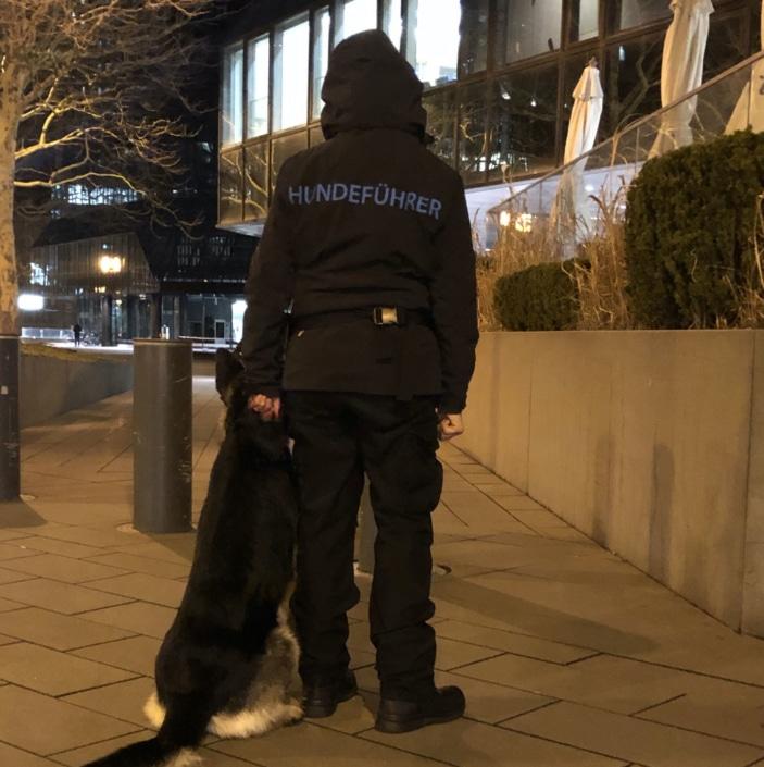 Diensthundeführer mit Hund